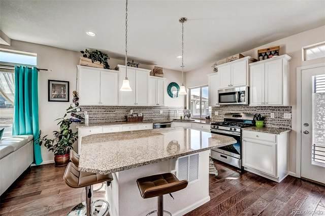 4101 Coriander Street, Castle Rock, CO 80109 (#2301741) :: Wisdom Real Estate