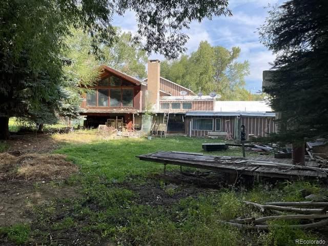15390 Barber Lane, Buena Vista, CO 81211 (#2301867) :: Bring Home Denver with Keller Williams Downtown Realty LLC