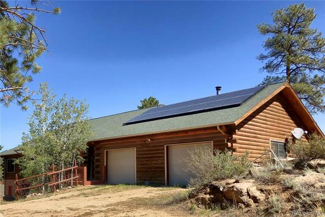 75 & 103 Copper Gulch Circle, Cotopaxi, CO 81223 (MLS #2302627) :: 8z Real Estate