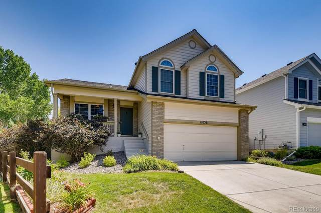 11036 Grouse Court, Parker, CO 80134 (#2303720) :: The Artisan Group at Keller Williams Premier Realty