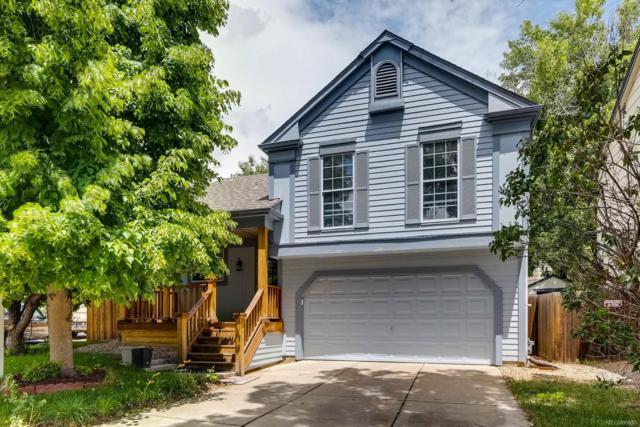 4558 Malta Street, Denver, CO 80249 (#2303863) :: Wisdom Real Estate