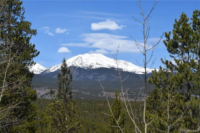 483 Mt. Elbert Drive, Twin Lakes, CO 81251 (#2312217) :: The DeGrood Team