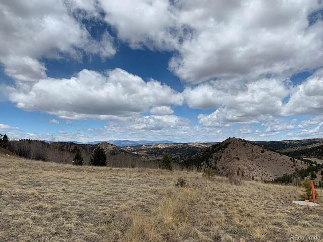 2250 County Road 1, Cripple Creek, CO 80813 (#2313075) :: The DeGrood Team