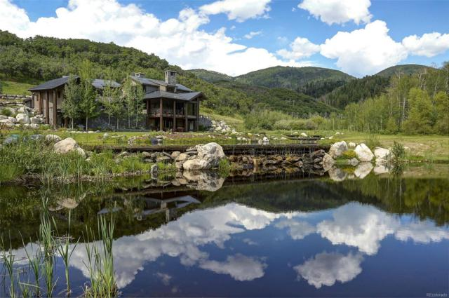 33700 Rushing Water Lane, Steamboat Springs, CO 80487 (#2315257) :: House Hunters Colorado