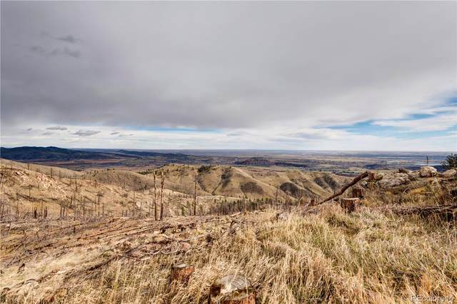 33 Hernia Hill Trail, Bellvue, CO 80512 (MLS #2317652) :: 8z Real Estate