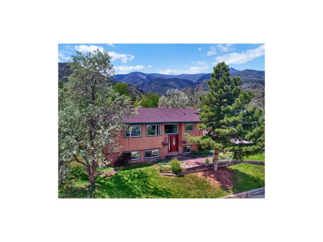 17 Kreg Lane, Manitou Springs, CO 80829 (MLS #2318385) :: 8z Real Estate