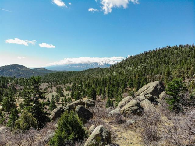 Basin Drive, Cotopaxi, CO 81223 (MLS #2318466) :: 8z Real Estate