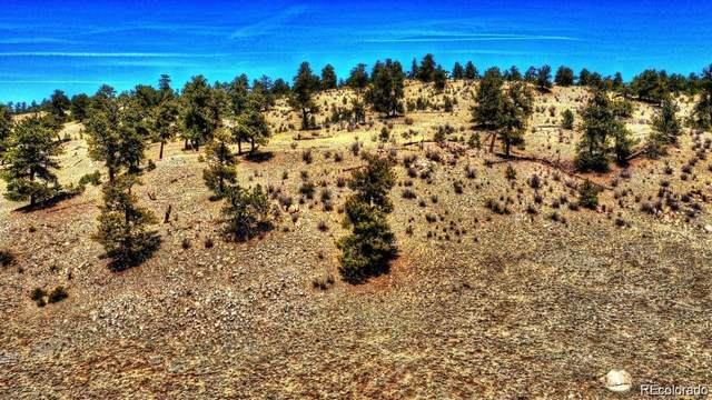 529 Goldenburg Canyon Road, Hartsel, CO 80449 (#2326302) :: Mile High Luxury Real Estate