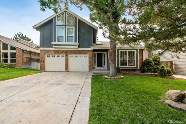 10271 Northpark Drive, Westminster, CO 80031 (MLS #2328534) :: Find Colorado