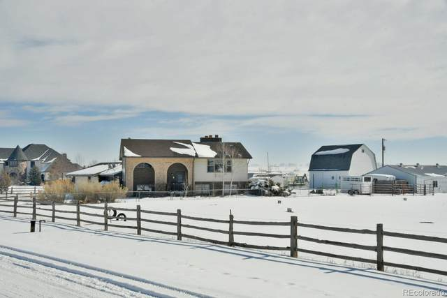 3080 E 165TH Avenue, Brighton, CO 80602 (#2330017) :: My Home Team