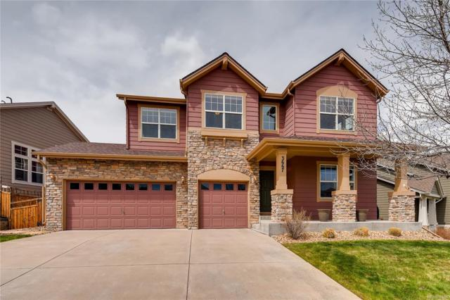 3667 Sunridge Terrace Drive, Castle Rock, CO 80109 (#2332727) :: Wisdom Real Estate