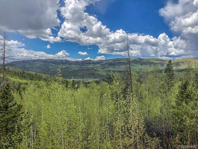 83 & 125 Gcr 414 / Elk Road, Granby, CO 80446 (#2333341) :: The Dixon Group