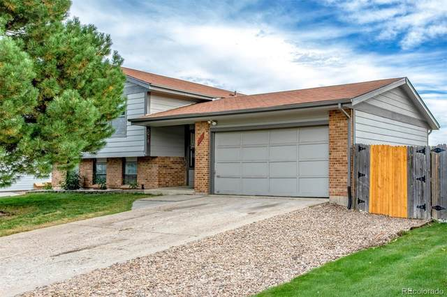 11946 Temple Drive, Morrison, CO 80465 (#2333670) :: The DeGrood Team