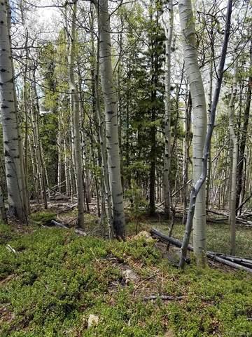 000 Hidden Wilderness Road, Idaho Springs, CO 80452 (#2334623) :: The DeGrood Team