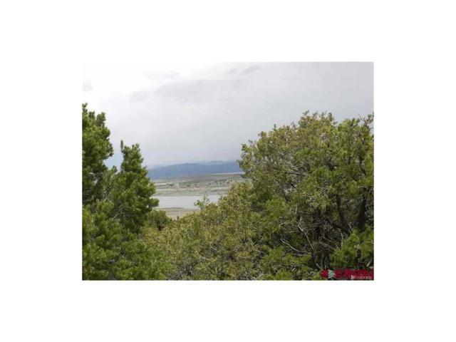 lot 50 Son Of Norway Drive, San Luis, CO 81152 (MLS #2335372) :: 8z Real Estate