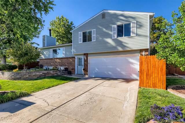 9485 W Bellwood Place, Denver, CO 80123 (#2337495) :: Venterra Real Estate LLC