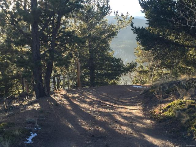 Park County 69 Road, Bailey, CO 80421 (MLS #2338124) :: 8z Real Estate