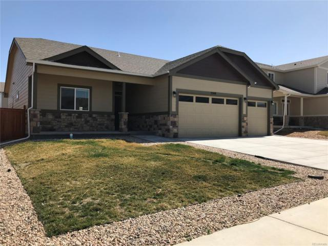 2240 73rd Avenue Place, Greeley, CO 80634 (#2339134) :: The Peak Properties Group