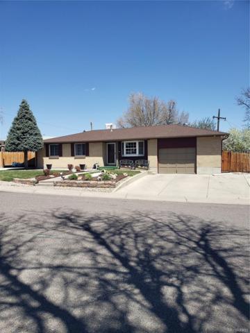8330 Nueva Vista Drive, Denver, CO 80229 (MLS #2341181) :: The Sam Biller Home Team