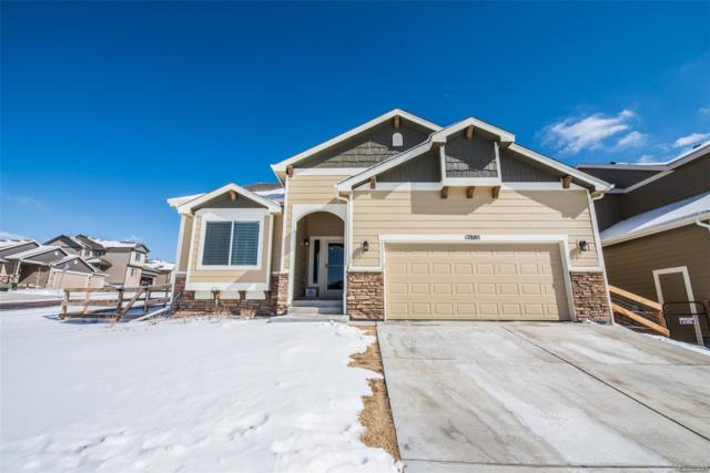 17885 Mining Way, Monument, CO 80132 (#2342645) :: Wisdom Real Estate