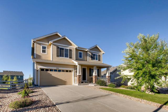 2925 Hillcroft Lane, Castle Rock, CO 80104 (#2344610) :: The Peak Properties Group