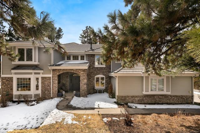 817 Good Hope Drive, Castle Pines, CO 80108 (#2347254) :: The DeGrood Team