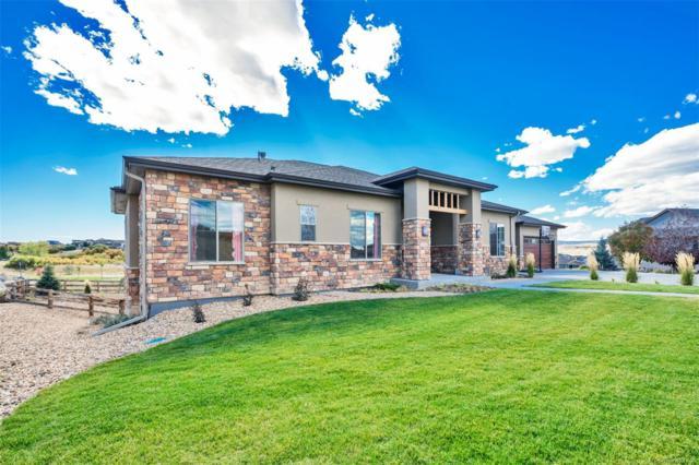 372 Castlemaine Court, Castle Rock, CO 80104 (MLS #2347482) :: 8z Real Estate