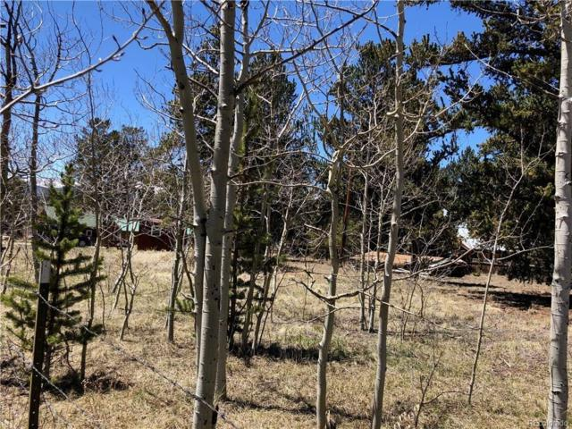 Witcher Street, Fairplay, CO 80440 (MLS #2350201) :: 8z Real Estate