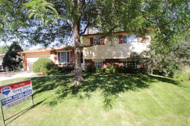 6489 S Everett Way, Littleton, CO 80123 (#2356141) :: Wisdom Real Estate