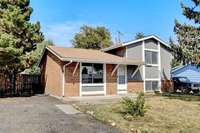1463 Quivira Drive, Denver, CO 80229 (#2361491) :: Symbio Denver