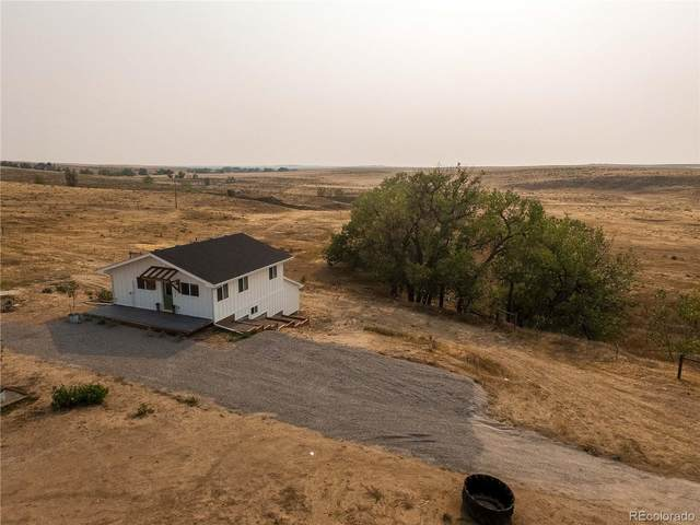45395 Cottonwood Lane, Deer Trail, CO 80105 (MLS #2363888) :: Kittle Real Estate