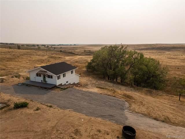 45395 Cottonwood Lane, Deer Trail, CO 80105 (MLS #2363888) :: 8z Real Estate