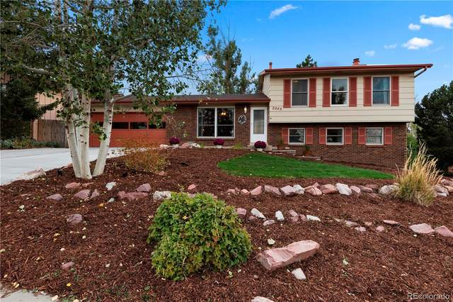 2245 Roundtop Drive, Colorado Springs, CO 80918 (#2364978) :: The DeGrood Team
