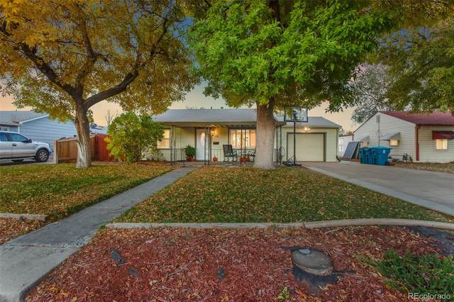 6020 Grape Drive, Commerce City, CO 80022 (#2366630) :: The DeGrood Team