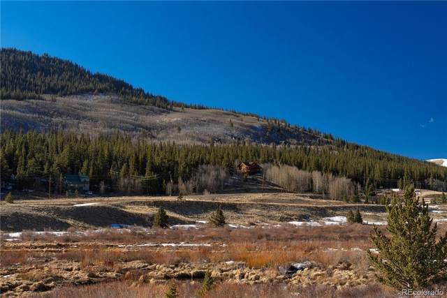 1729 Co Road 6, Alma, CO 80420 (#2370557) :: The Colorado Foothills Team | Berkshire Hathaway Elevated Living Real Estate