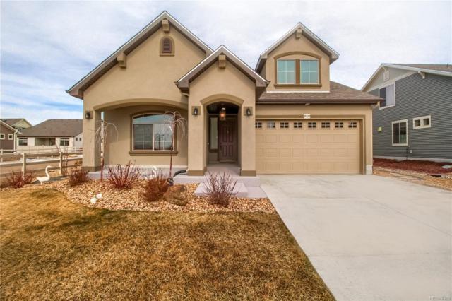 19729 E 52nd Avenue, Denver, CO 80249 (MLS #2372434) :: 8z Real Estate
