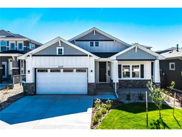 11679 Spectacular Bid Circle, Colorado Springs, CO 80921 (MLS #2374202) :: 8z Real Estate