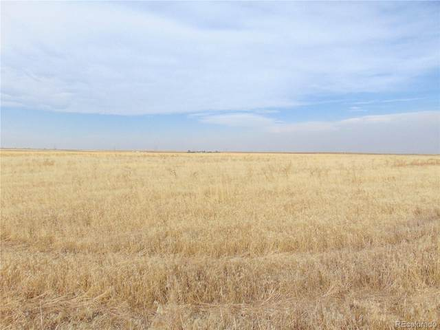 43300 E 144th Avenue, Bennett, CO 80102 (MLS #2375190) :: 8z Real Estate