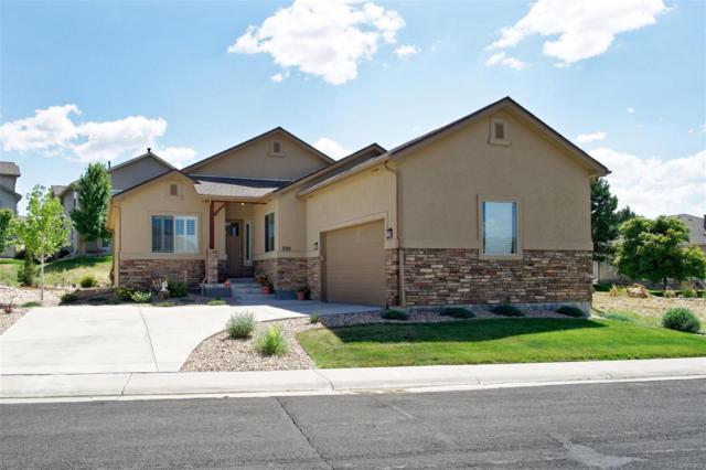 702 Stafford Circle, Castle Rock, CO 80104 (#2378509) :: The Peak Properties Group