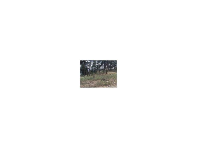 348 Mount Bailey Drive, Bailey, CO 80421 (MLS #2383736) :: 8z Real Estate