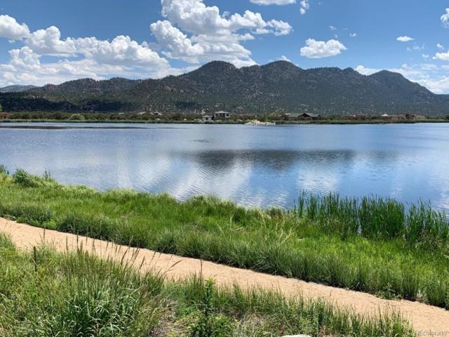 29871 Wood Duck Way, Buena Vista, CO 81211 (MLS #2388620) :: 8z Real Estate