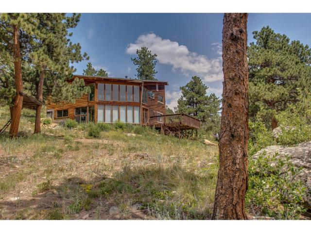 249 Rudi Lane, Golden, CO 80403 (MLS #2390114) :: 8z Real Estate