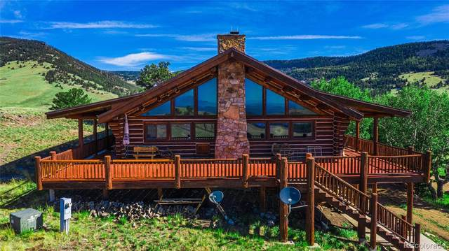 2842 Nesterville Road, Cotopaxi, CO 81223 (MLS #2391465) :: 8z Real Estate