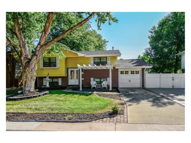 2116 S Balsam Court, Lakewood, CO 80227 (#2391715) :: Colorado Team Real Estate
