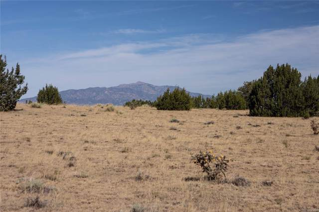 Medano Drive, Walsenburg, CO 81089 (MLS #2392819) :: 8z Real Estate