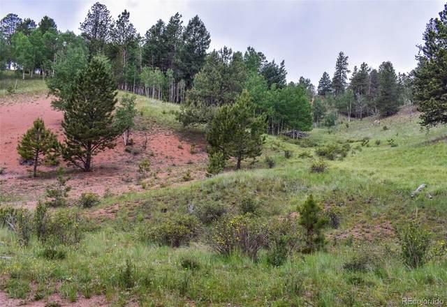 85 Silver Way, Cripple Creek, CO 80813 (#2394470) :: Finch & Gable Real Estate Co.