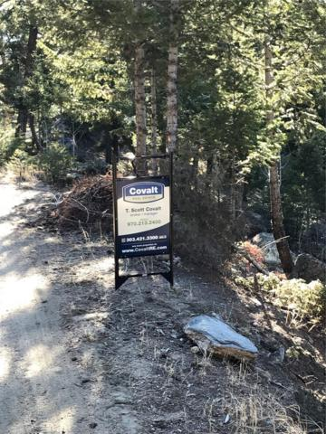To Be Determined, Evergreen, CO 80439 (#2396442) :: The Peak Properties Group