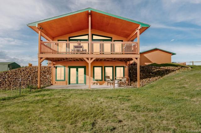 47841 County Road 101, Deer Trail, CO 80105 (MLS #2396761) :: 8z Real Estate