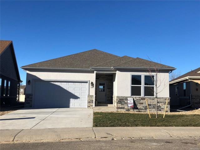 1316 Crabapple Drive, Loveland, CO 80538 (MLS #2398727) :: 8z Real Estate