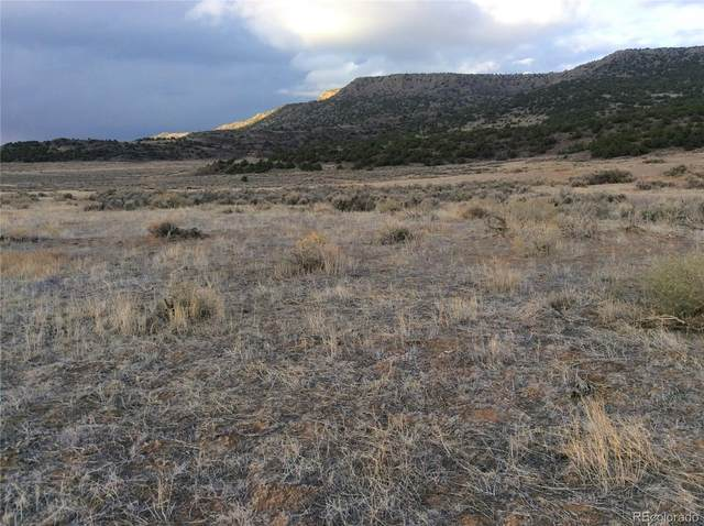0 Old Stagecoach Road, San Luis, CO 81152 (MLS #2399088) :: 8z Real Estate